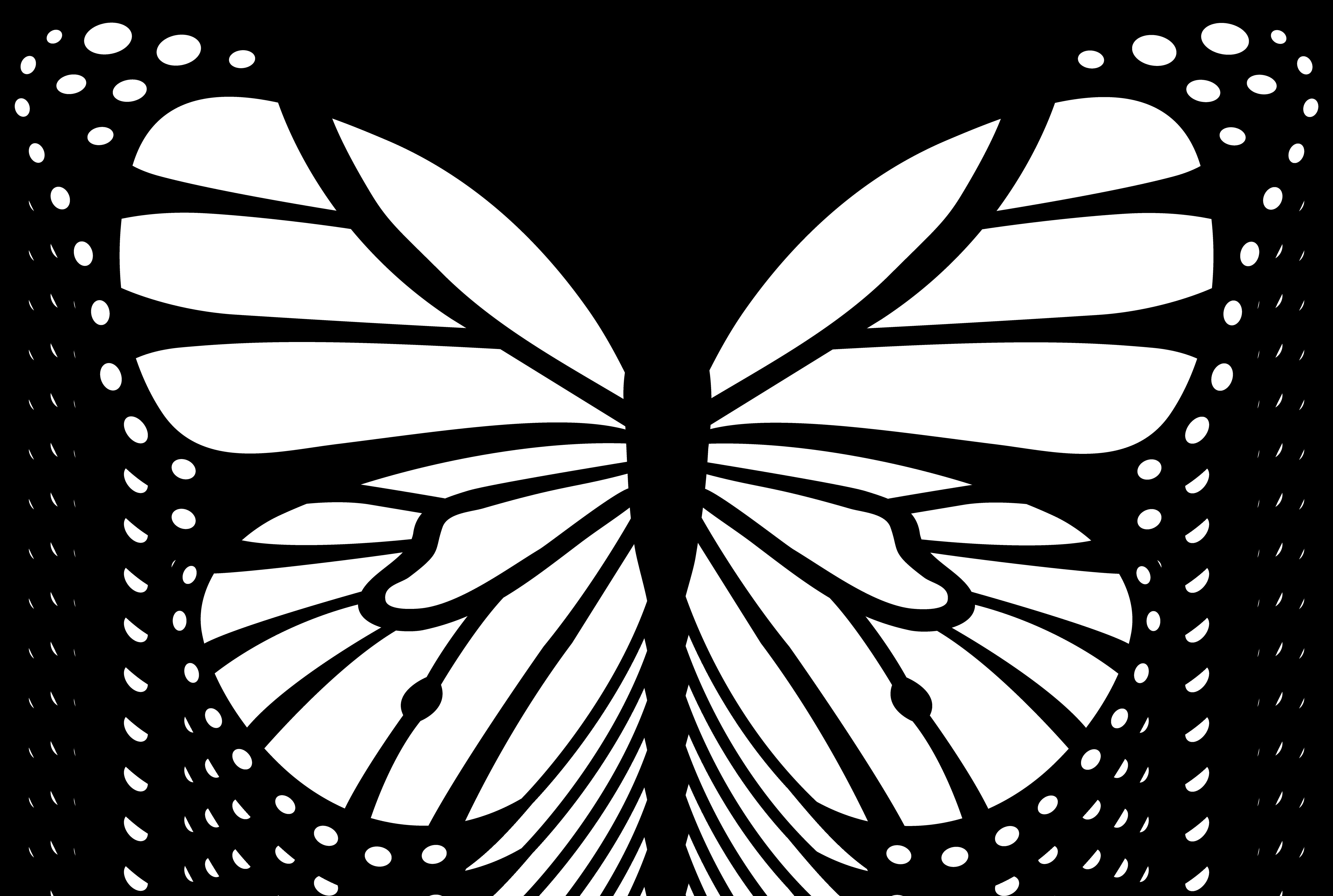 Free Butterfly Clipart-free butterfly clipart-15