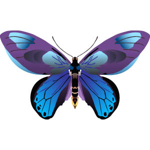 free butterfly clipart - Free Butterfly Clipart