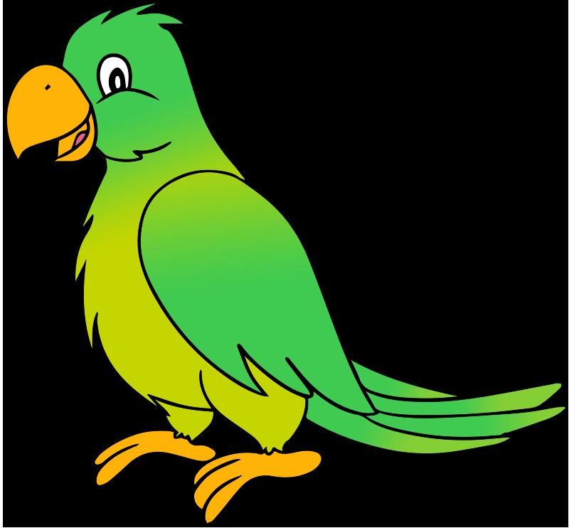 Free Cartoon Parrot Clip Art-Free Cartoon Parrot Clip Art-4