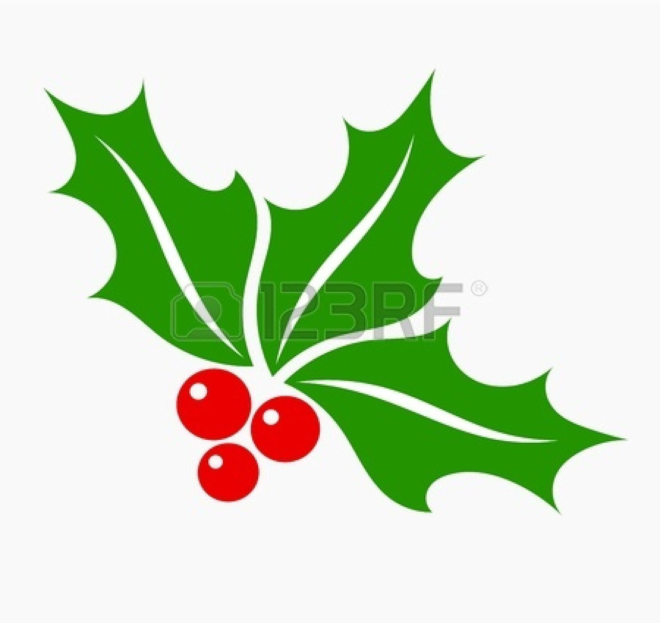 Holly Berries cartoon isolate