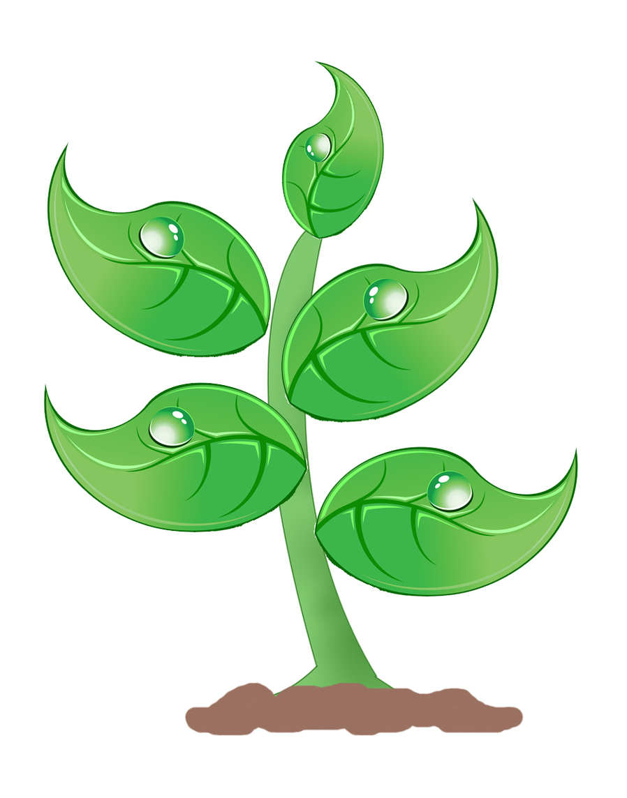 Free Clip Art Plant Clipart .