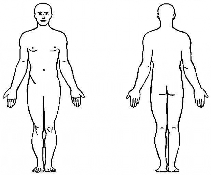43 Body Outline Clipart Clipartlook