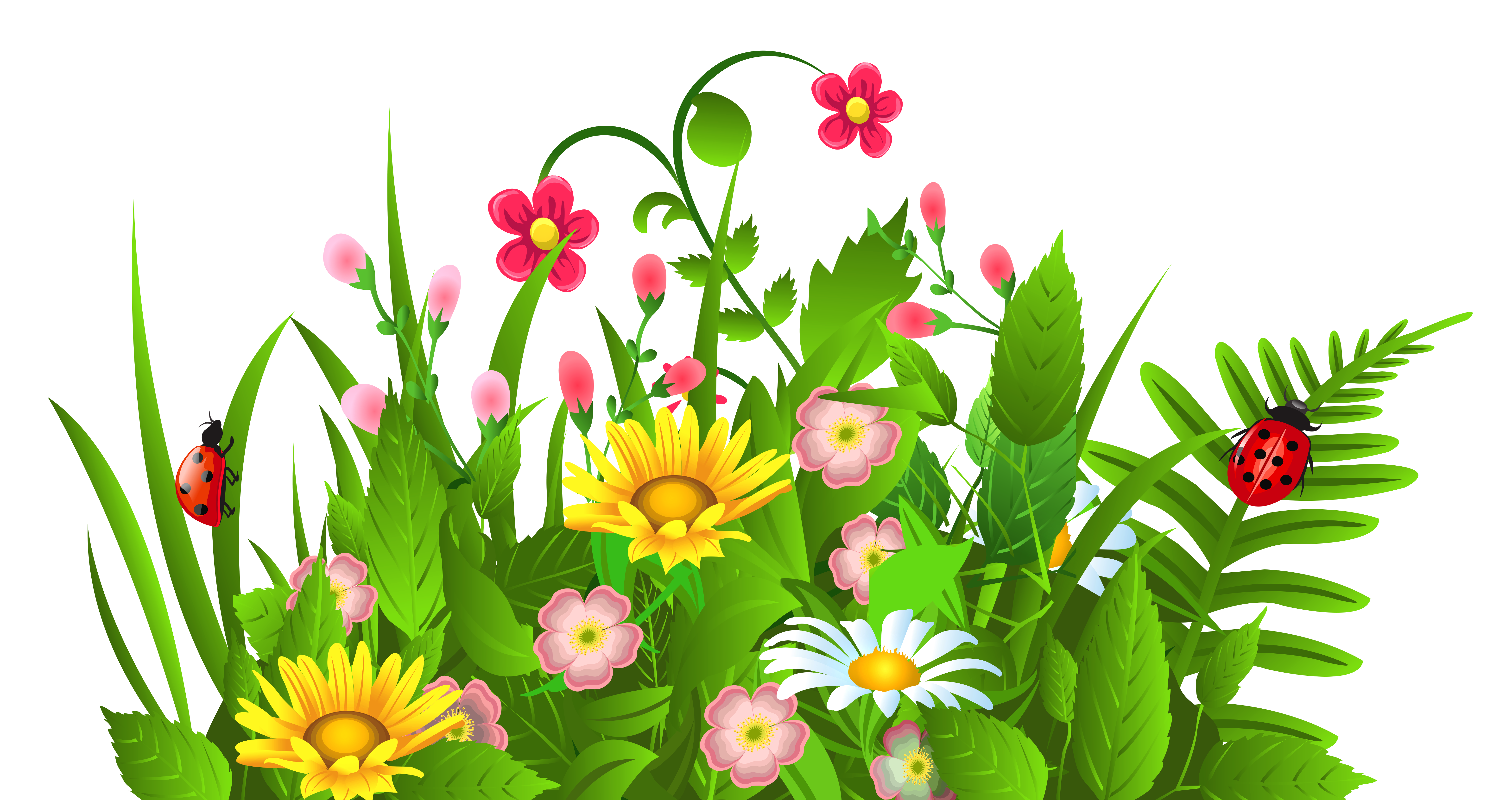 Free clipart images of flowers flower clip art pictures image 1 - Clipartix