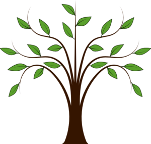 Free clipart willow tree - .