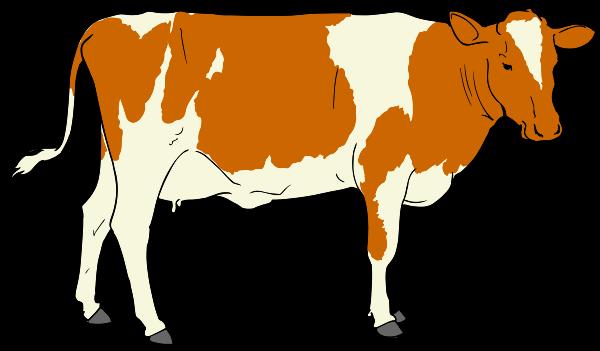 Free Cow Clip Art-Free Cow Clip Art-19