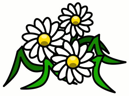 Free Daisy Clipart - Clip Art Daisy