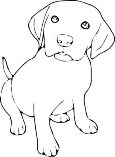 Free Dog Black And White .-Free Dog Black And White .-8