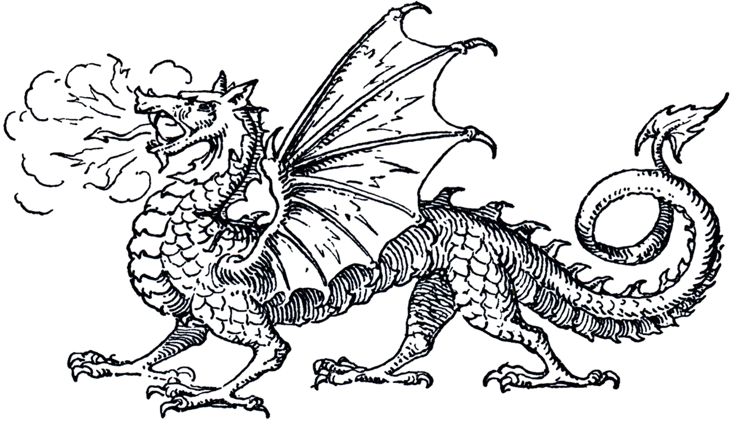 Free Dragon Clip Art The .