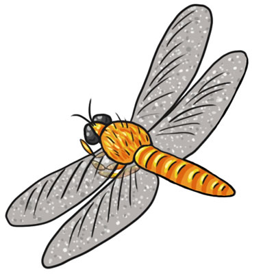 Free Dragonfly Clip Art 14
