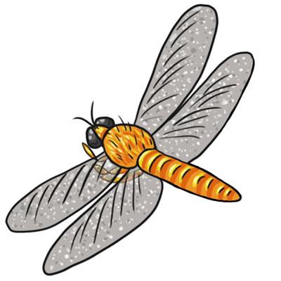 Free Dragonfly Clip Art 14-Free Dragonfly Clip Art 14-2
