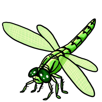 Free Dragonfly Clip Art 18
