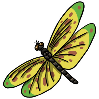 Free Dragonfly Clip Art 20