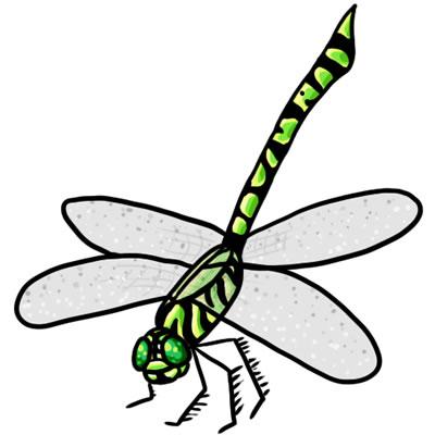 Free Dragonfly Clip Art 22