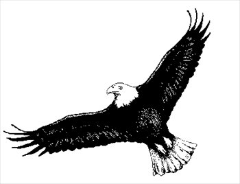 Free eagle clipart black and .