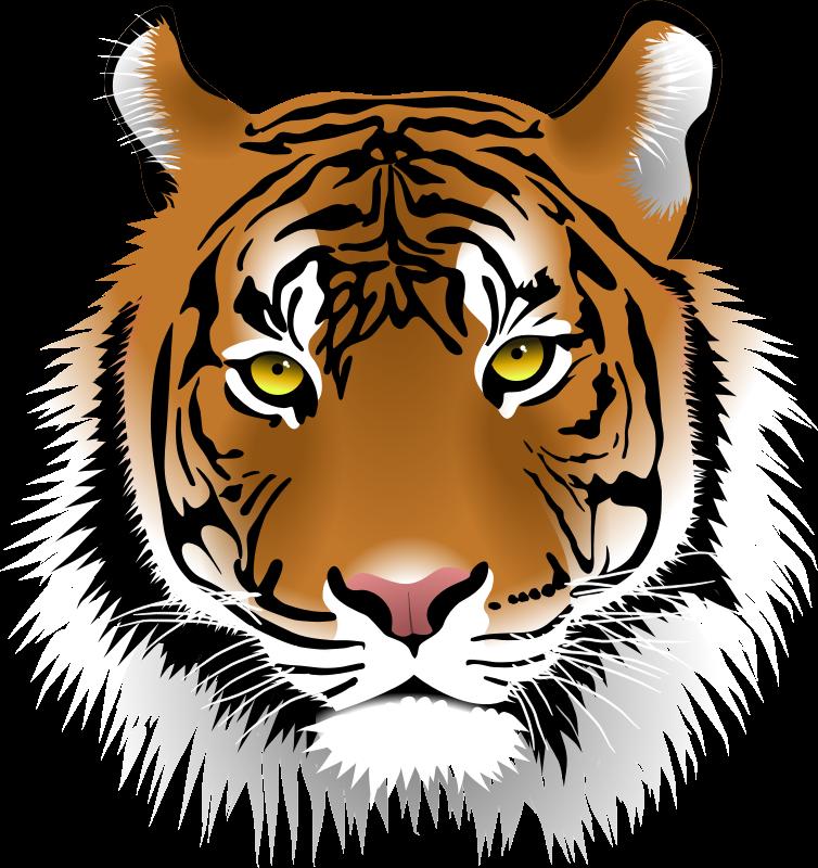 Free Elegant Tiger Face Clip Art-Free Elegant Tiger Face Clip Art-7