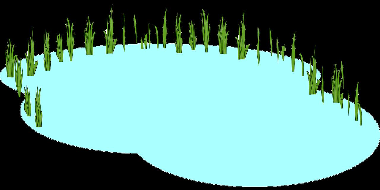 Free Freshwater Pond Clip Art u0026middot; pond6
