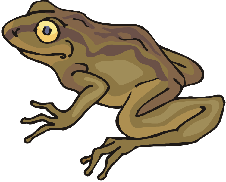 Free Frog Clipart-Free Frog Clipart-8