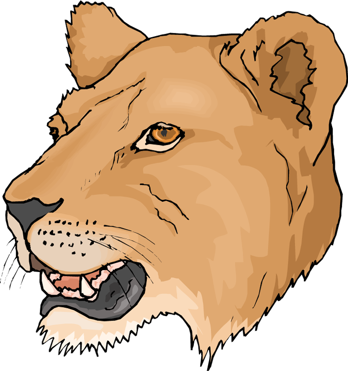 Free Head Lioness Clipart - Lioness Clipart