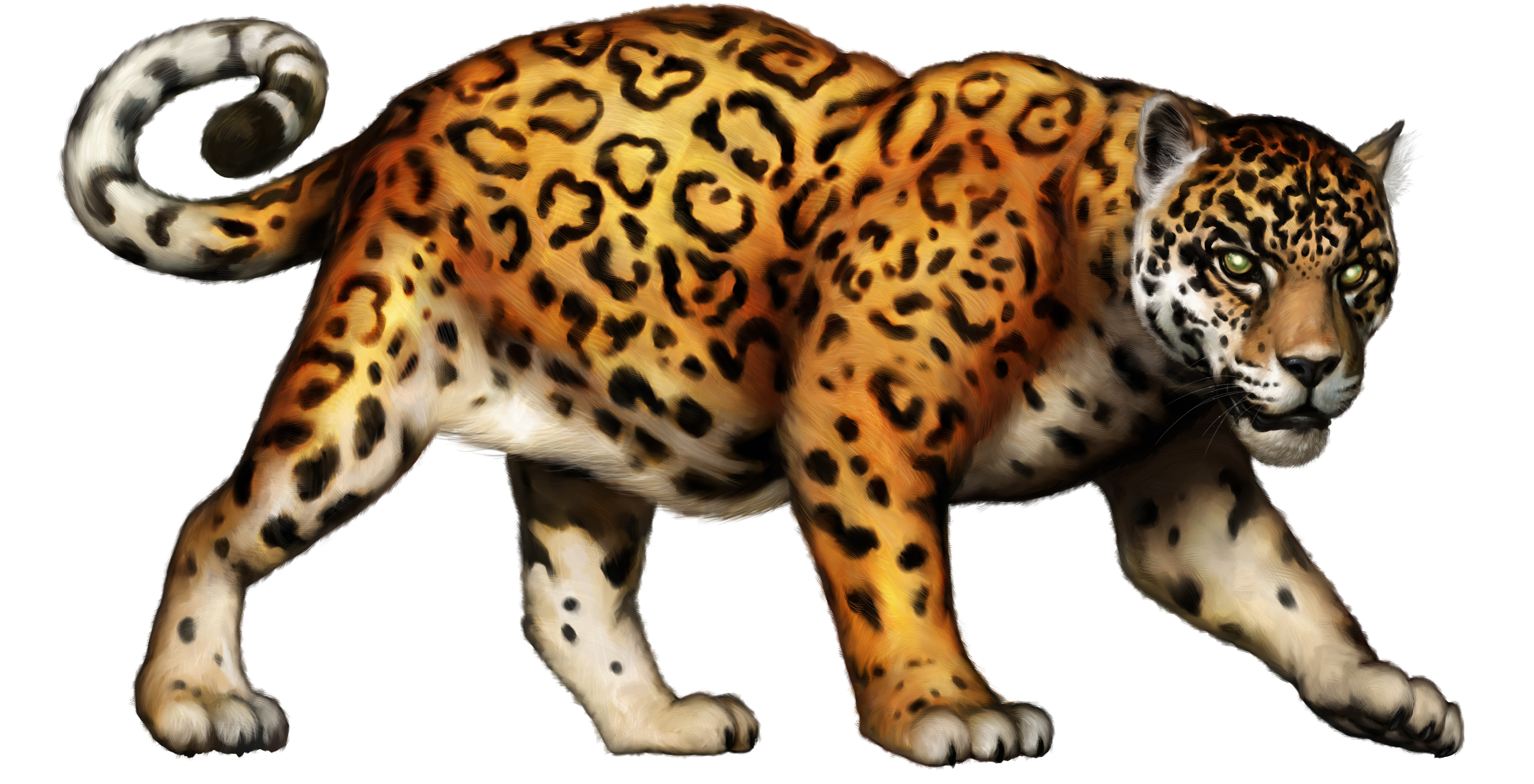 Free jaguar clip art big cat clipart ima-Free jaguar clip art big cat clipart image-9