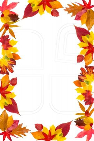 fall leaves border clipart