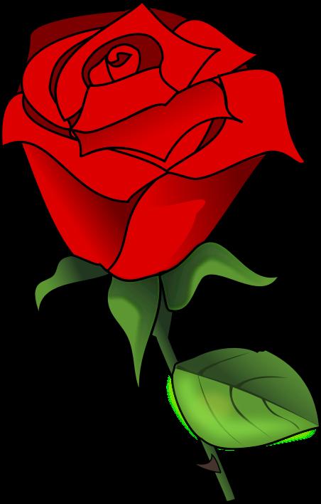 Free Lovely Red Rose Clip Art