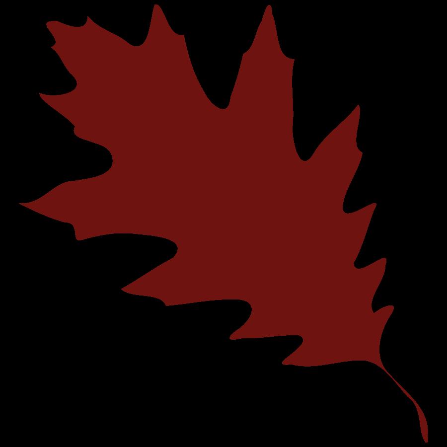Free Oak Leaf Clipart; Pictures Leaf | Free Download Clip Art | Free Clip Art