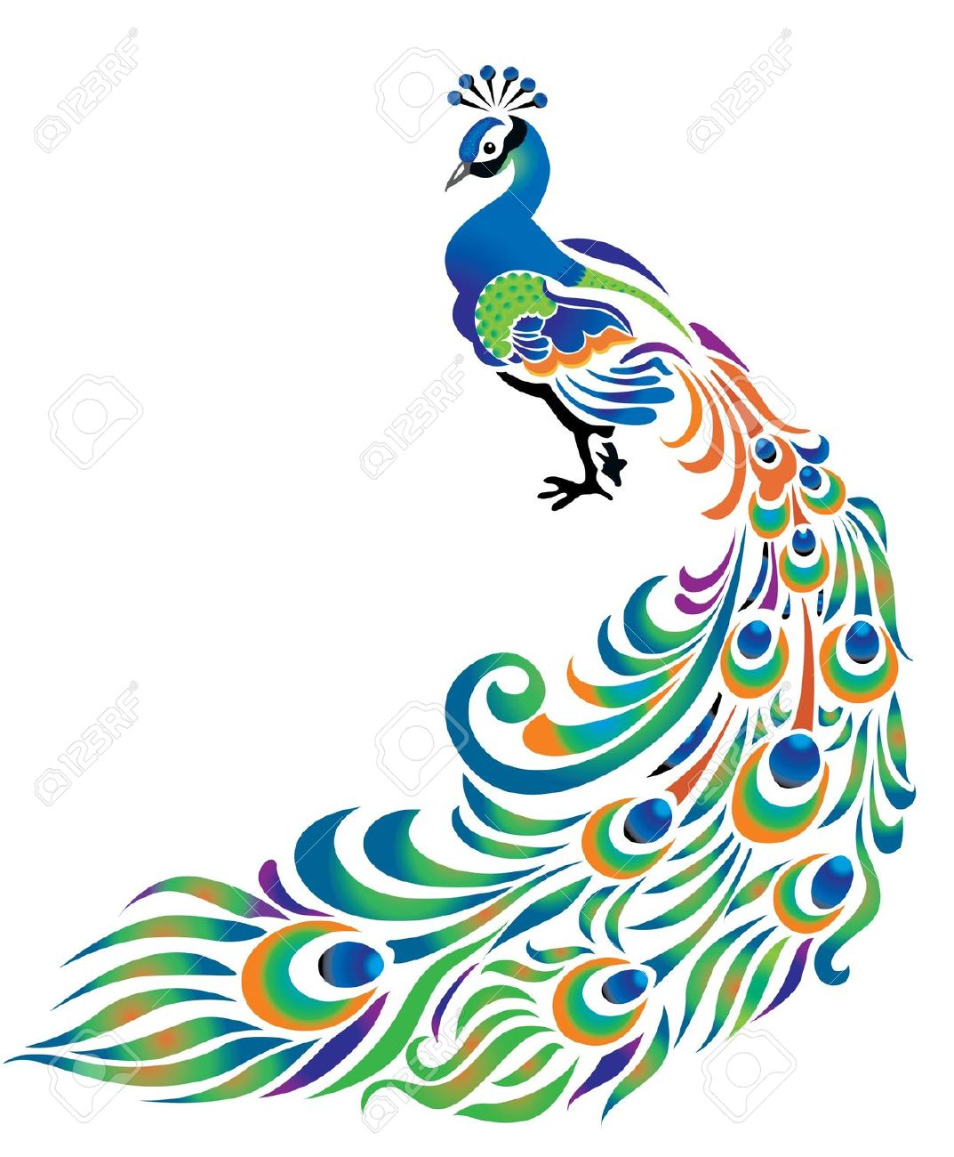 Free peacock clipart 2