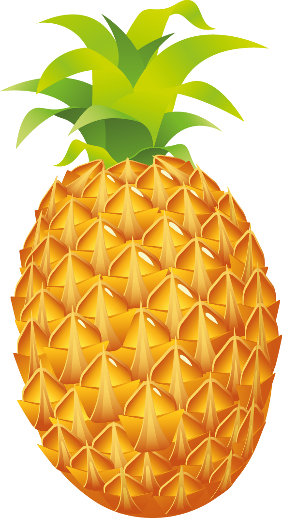 Free Pineapple Clip Art u0026middot; pineapple7