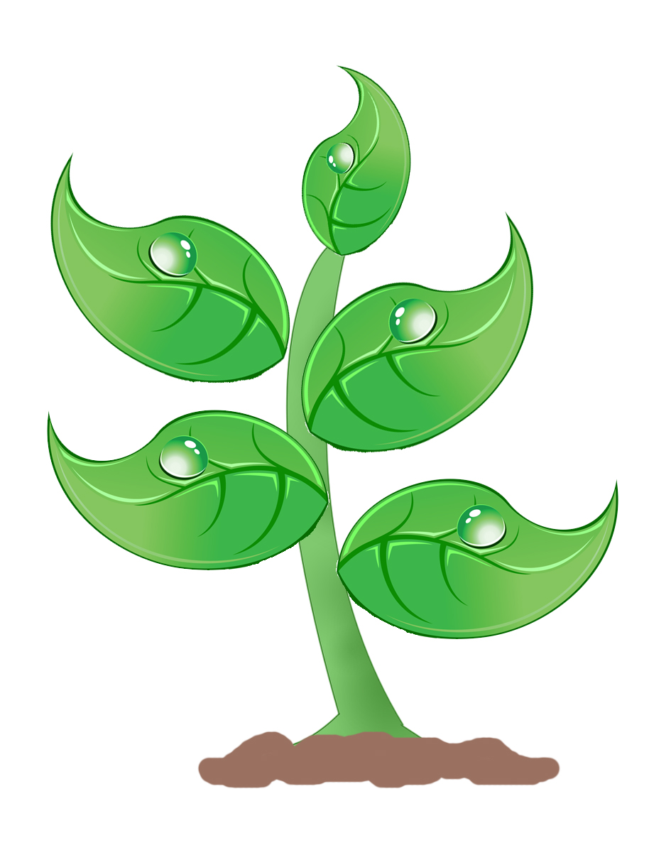Free Plant Clipart-Free Plant Clipart-2