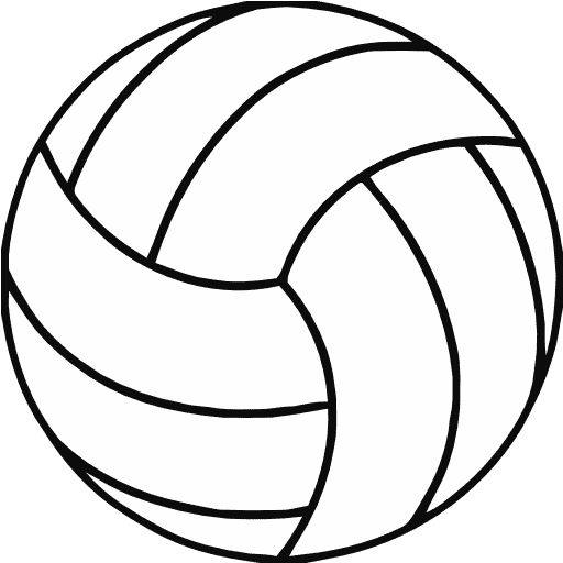 picture of a volleyball black