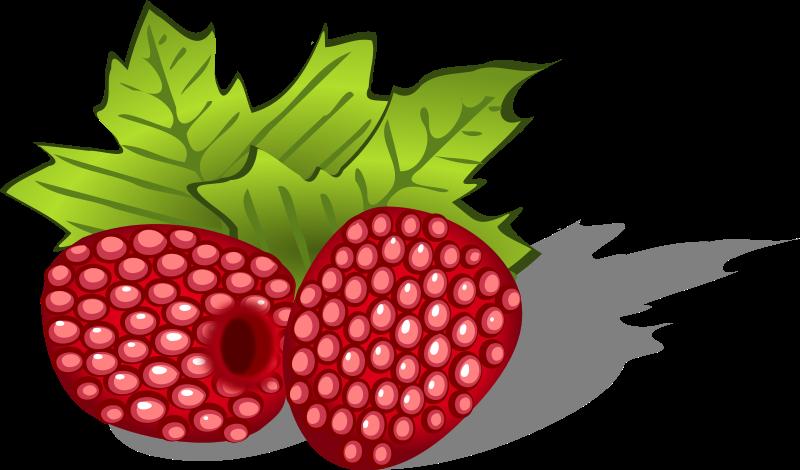 Raspberry Clip Art