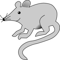 Free Rat Clipart
