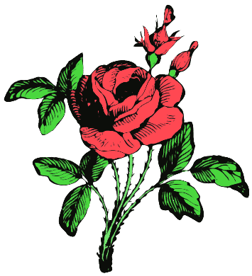 Free Rose Clipart-Free Rose Clipart-7