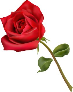Free Rose Clipart - ClipArt Best ...