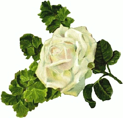 Free Rose Clipart-Free Rose Clipart-2