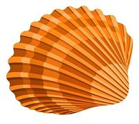 Free seashells clipart free clipart images cliparts and others