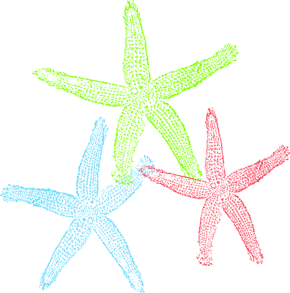 Free Set of Three Colorful Starfish Clip Art