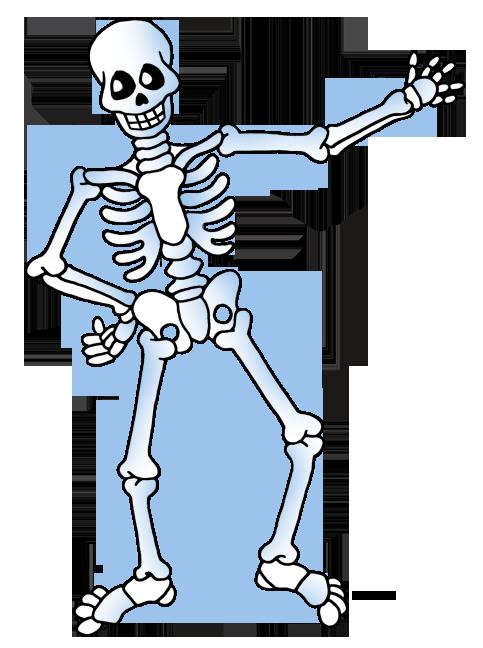 Free skeleton clipart public  - Clip Art Skeleton