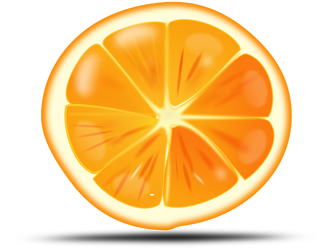 Free Sliced Orange Clip Art-Free Sliced Orange Clip Art-3