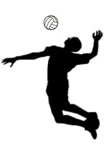 Free sports volleyball clipart clip art pictures graphics id 2