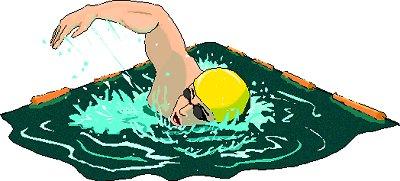Free swimming clip art clipart 3 image
