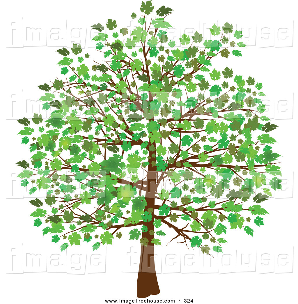 Free Tree Clip Art Downloads Clipart Of -Free Tree Clip Art Downloads Clipart Of A Grown Tree With Green-6