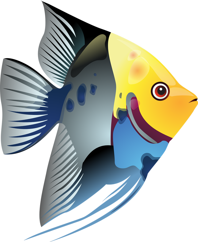 ... Free Tropical Fish Clip Art ...