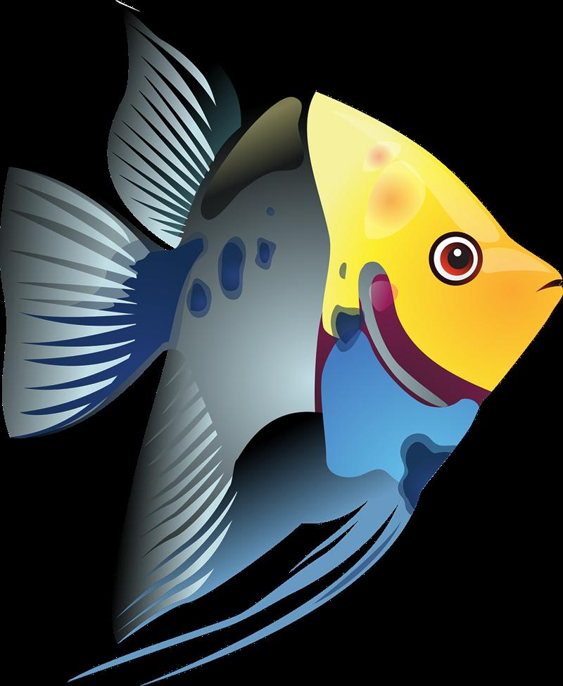 ... Free Tropical Fish Clip Art ...-... Free Tropical Fish Clip Art ...-7