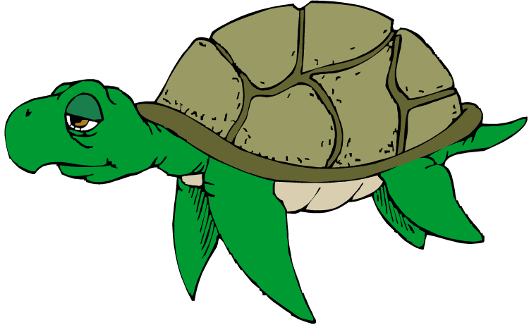 Free turtle clipart 2