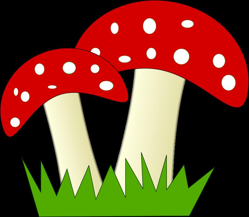 Free Two Mushrooms Clip Art-Free Two Mushrooms Clip Art-5
