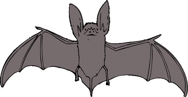 ... Free Vector Bat Clip Art-... free vector Bat clip art-15