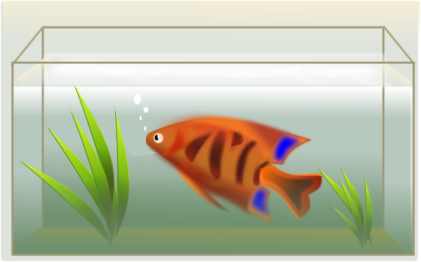 ... free vector Fish Tank clip art-... free vector Fish Tank clip art-13