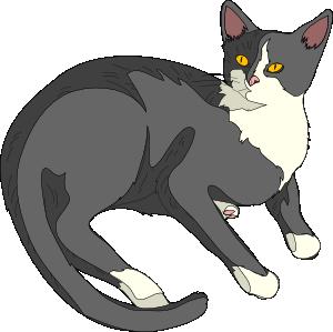 ... free vector Gatto Cat cli - Cat Clipart Free