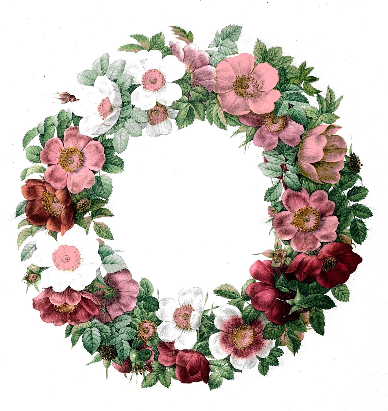 Free Vintage Clip Art u2013 Rose Wreath
